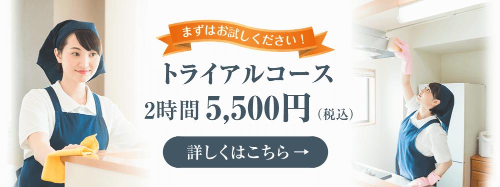 トライアルコース 2時間5,500円