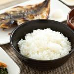お魚・野菜メニュー